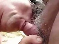 Gay Polar Bear Porn